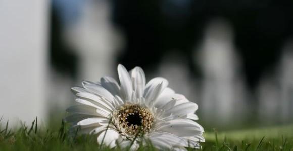 cimitero_festa_morti-580x300