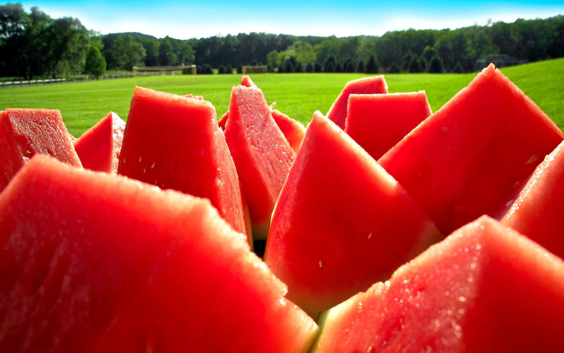 watermelon-fruit-wallpaper-4269-4504-hd-wallpapers